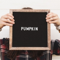 9 Aesthetic Fall Letterboard Quotes ft. Main Event USA
