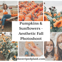 Pumpkins & Sunflowers - Aesthetic Fall Photoshoot